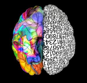 cognizione